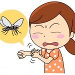 蚊に刺された